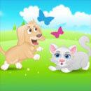Assurance chien/chat